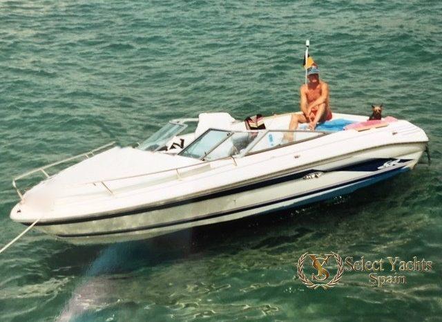 Sea Ray 200 SR full
